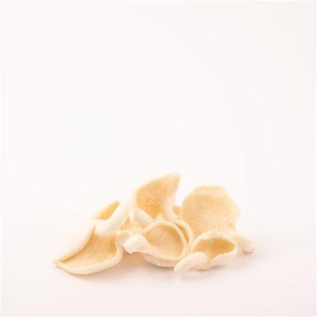 Australian Oyster Mushrooms 150g Pack